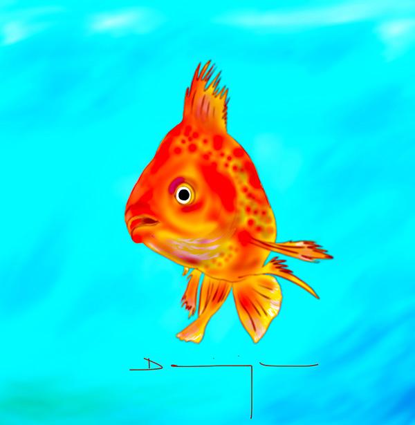 Pas de poisson rouge pour poussinette la caricaturiste for Nom poisson rouge