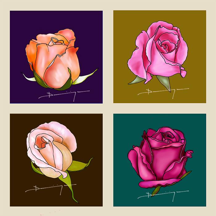 boutons-de-roses